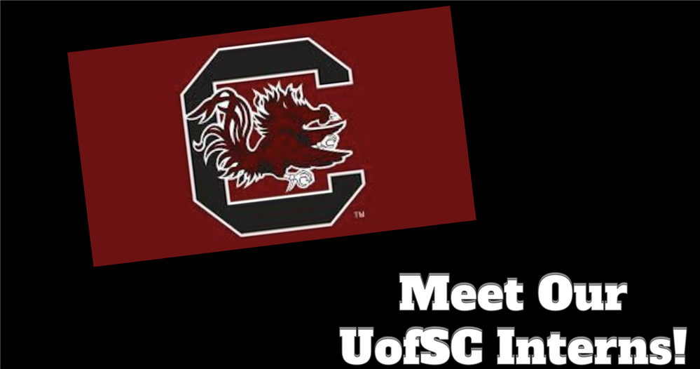 Meet Our UofSC Interns!